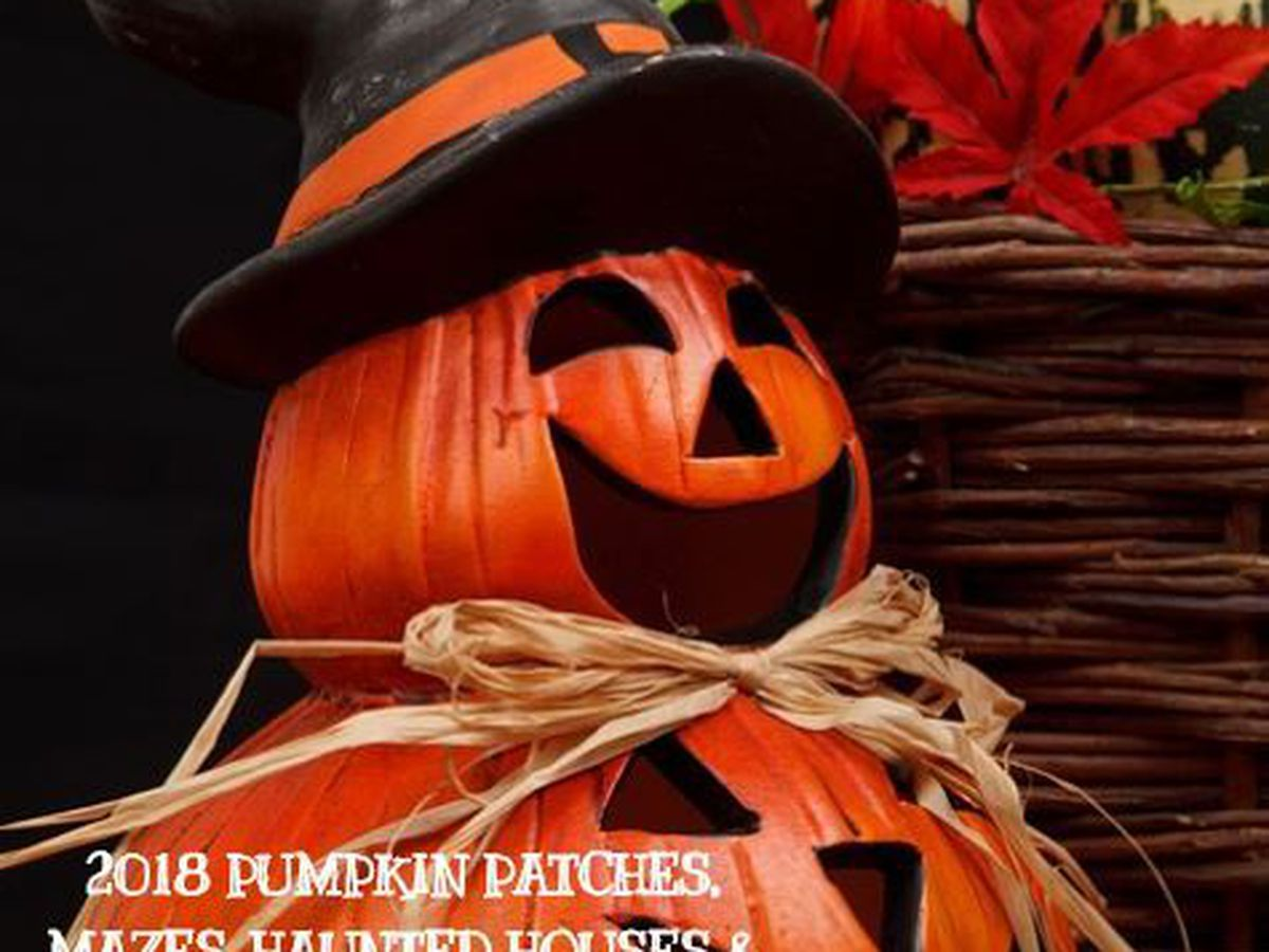 Southern AZ: Halloween, pumpkin patches and corn mazes for 2018