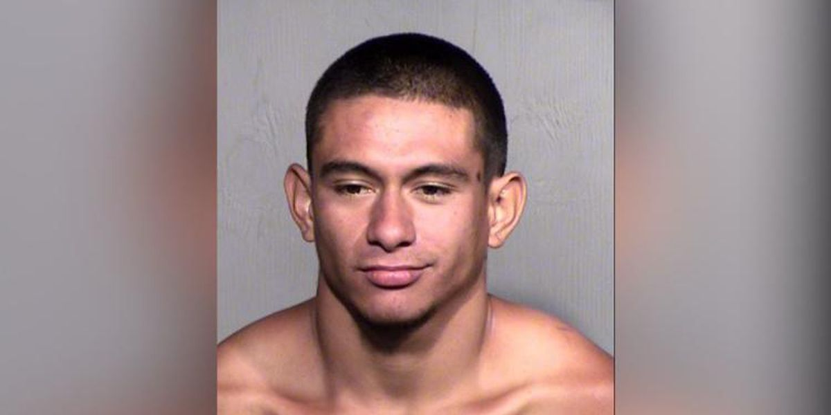 Police: Arizona man admits to beheading roommate's dog