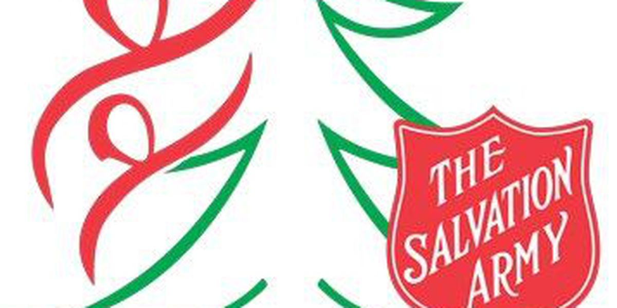 Help the Salvation Army make a child's Christmas