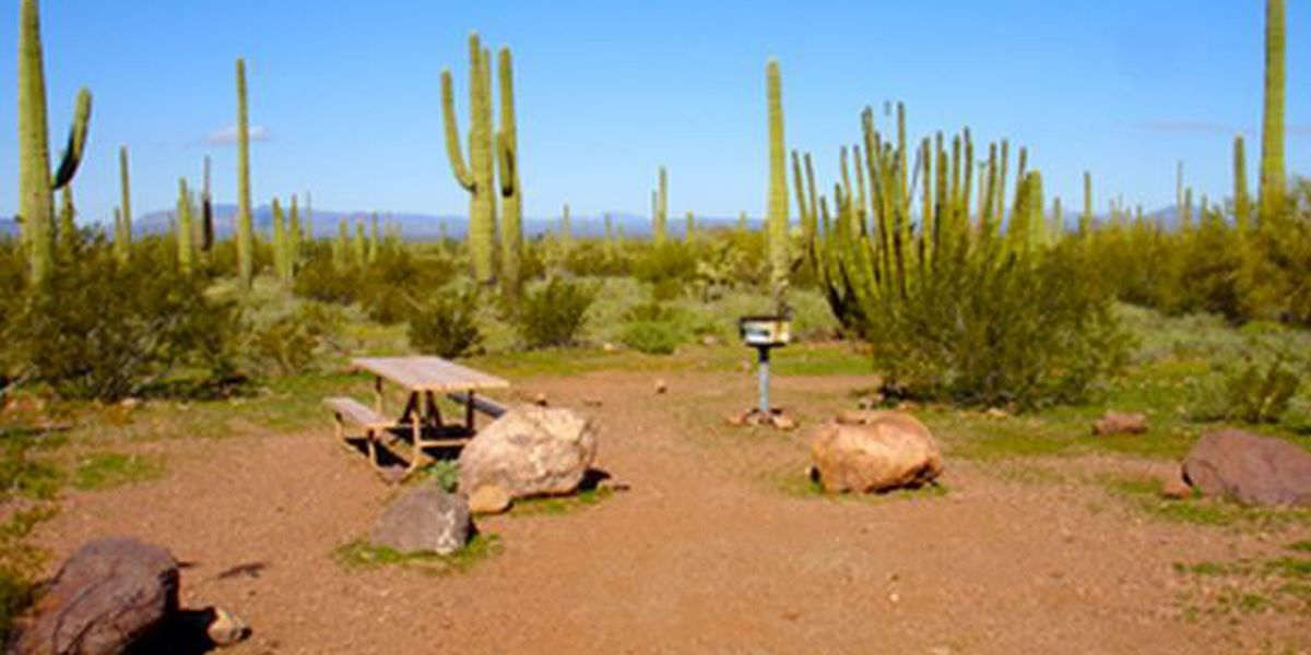 Change in registration procedures for Organ Pipe Cactus campground