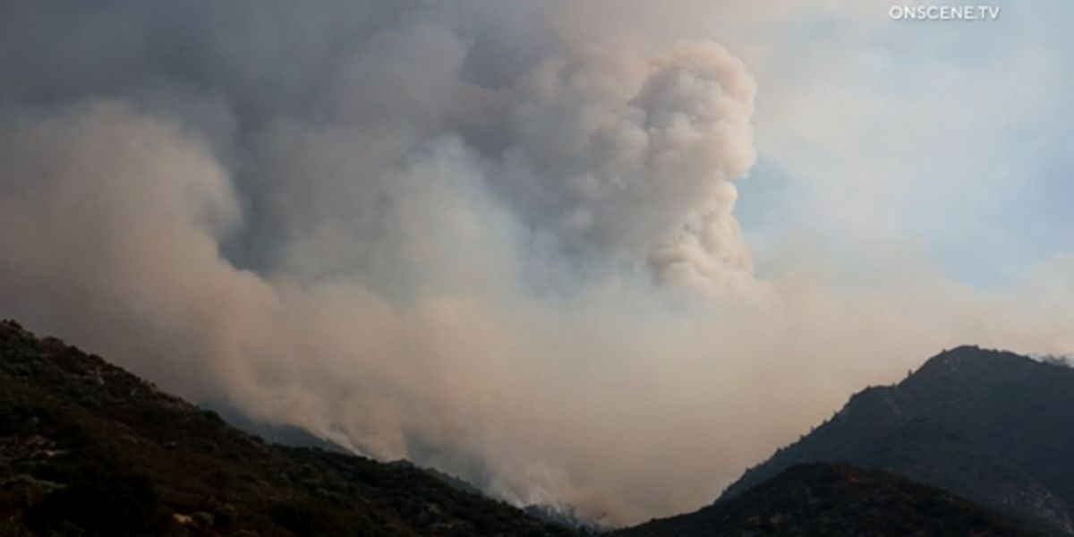 Firefighter dies battling wildfire sparked by gender reveal