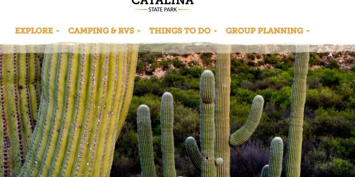Lineup announced for Catalina State Park's Outdoor Concerts