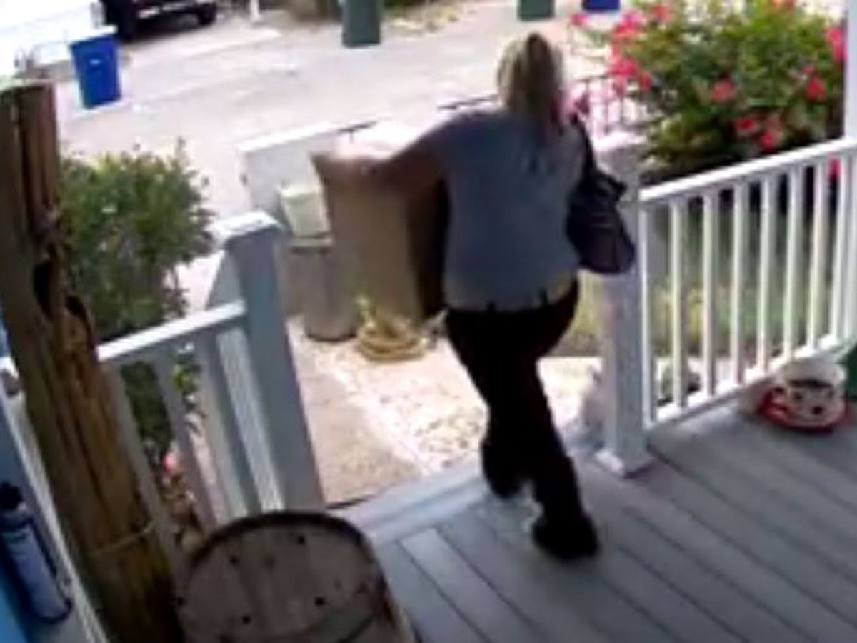 Caught on camera: Porch Pirate strikes on south side