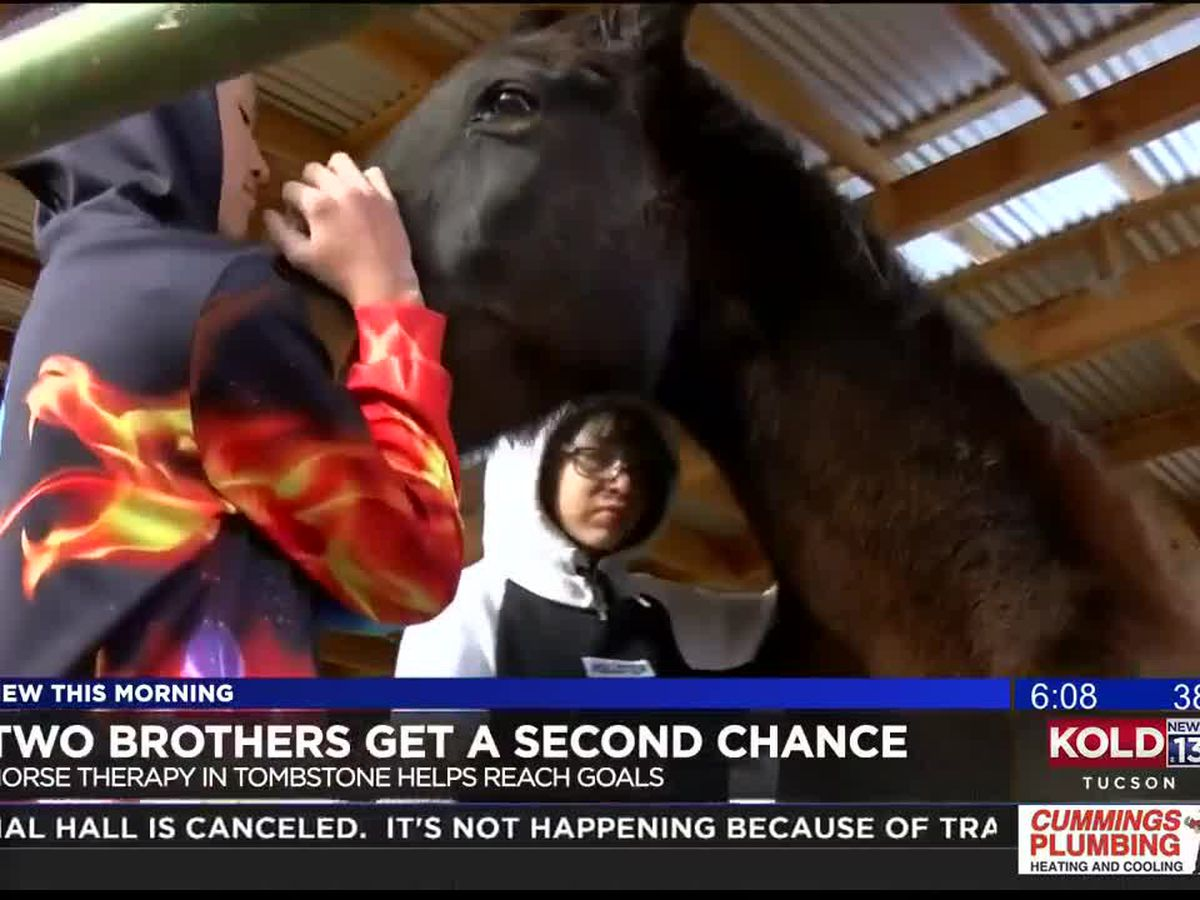 Equine therapy helps Sierra Vista brothers