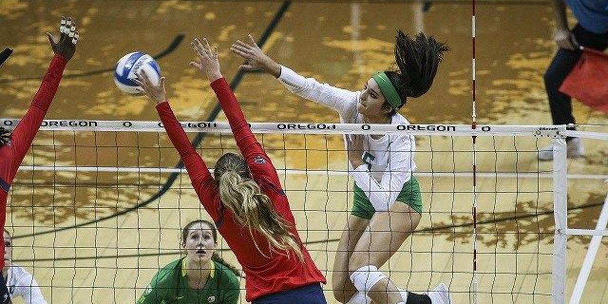 Arizona Volleyball swept on the Oregon trail