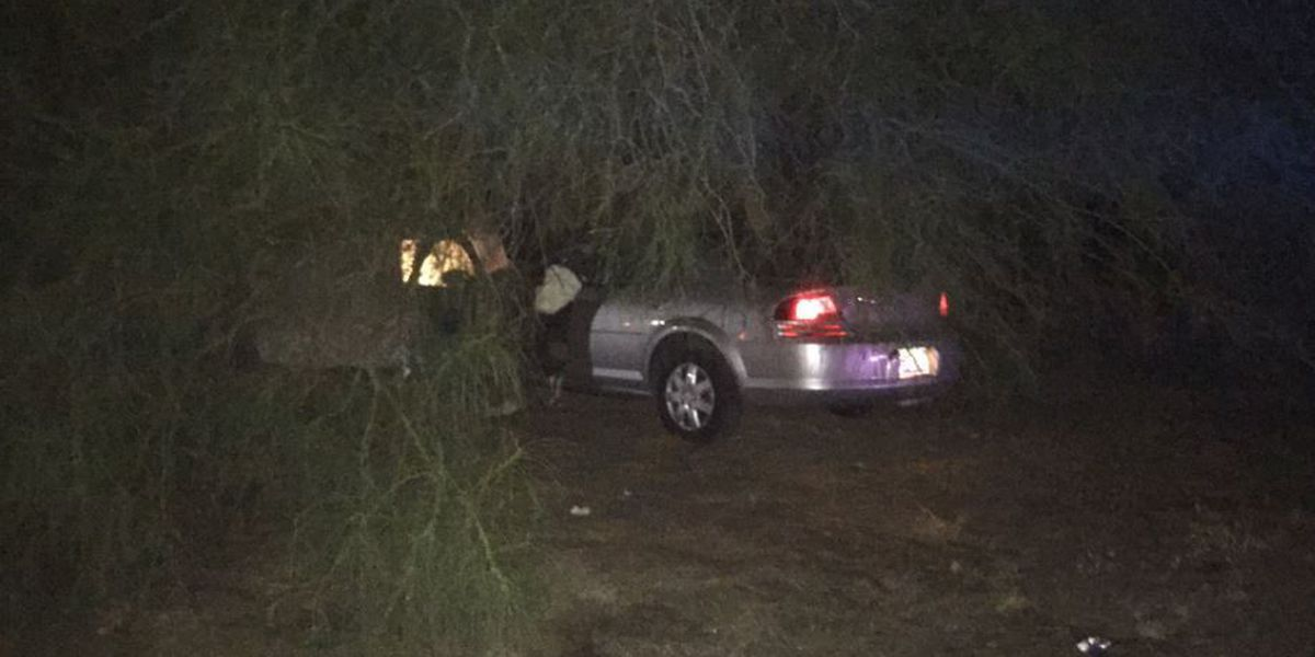 Power restored near Sabino Canyon, River after fatal crash