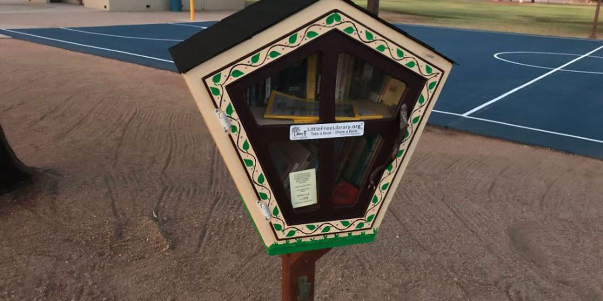 Vandalism at Little Free Library brings community together