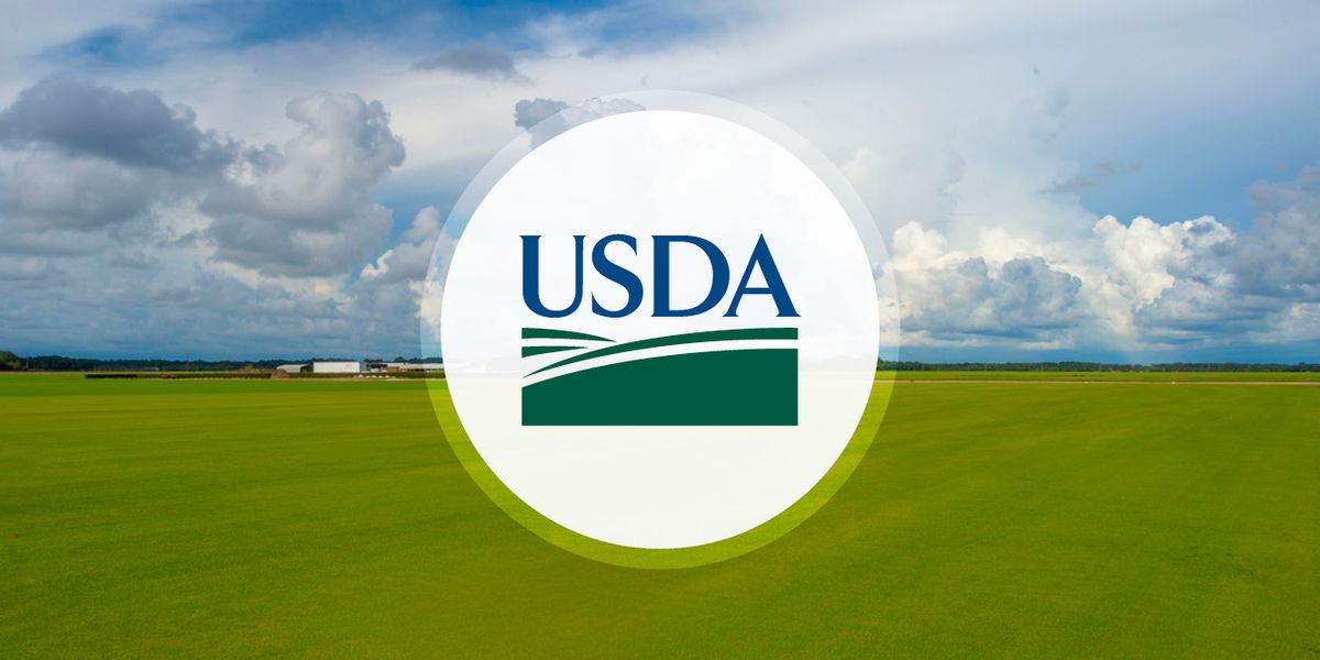 USDA to use $2.7 million investment in watershed conservation project, Arizona