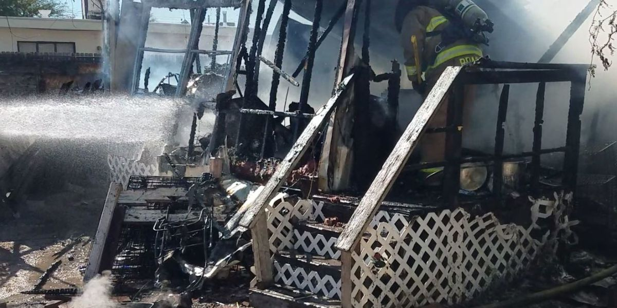 2 dogs dead in midtown mobile home fire