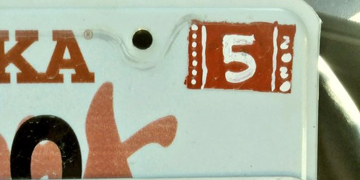 Hand-painted license plate sticker gets A for effort, but T for ticket
