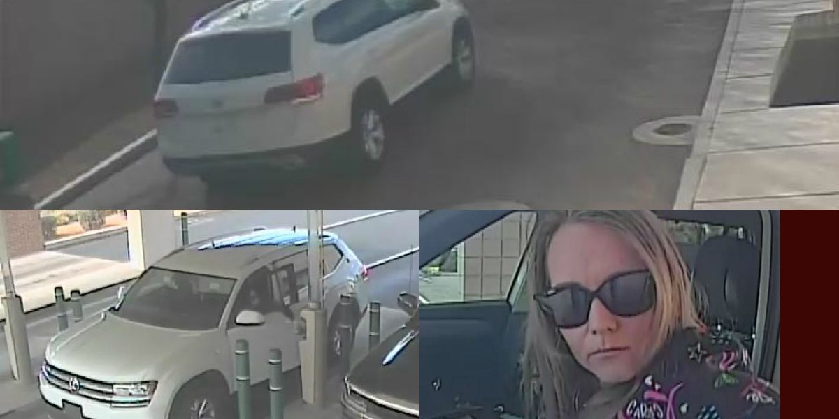OVPD looking to identify fraud, theft suspect