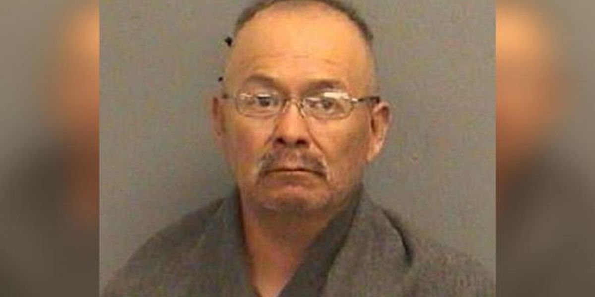 Winslow man charged following discovery of four dead, nine emaciated horses
