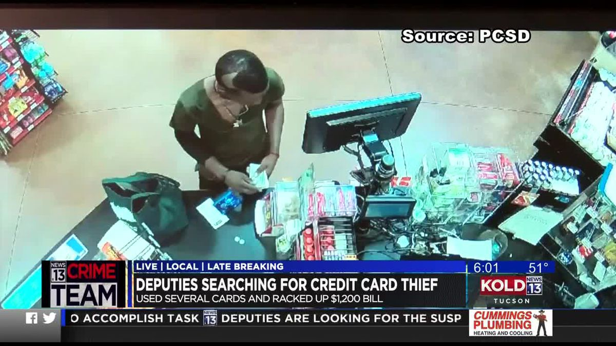 PCSD: $1,200 shopping spree charged to stolen credit cards