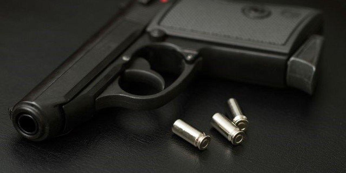 Rep. McSally proposes bipartisan bill to help prevent gun violence