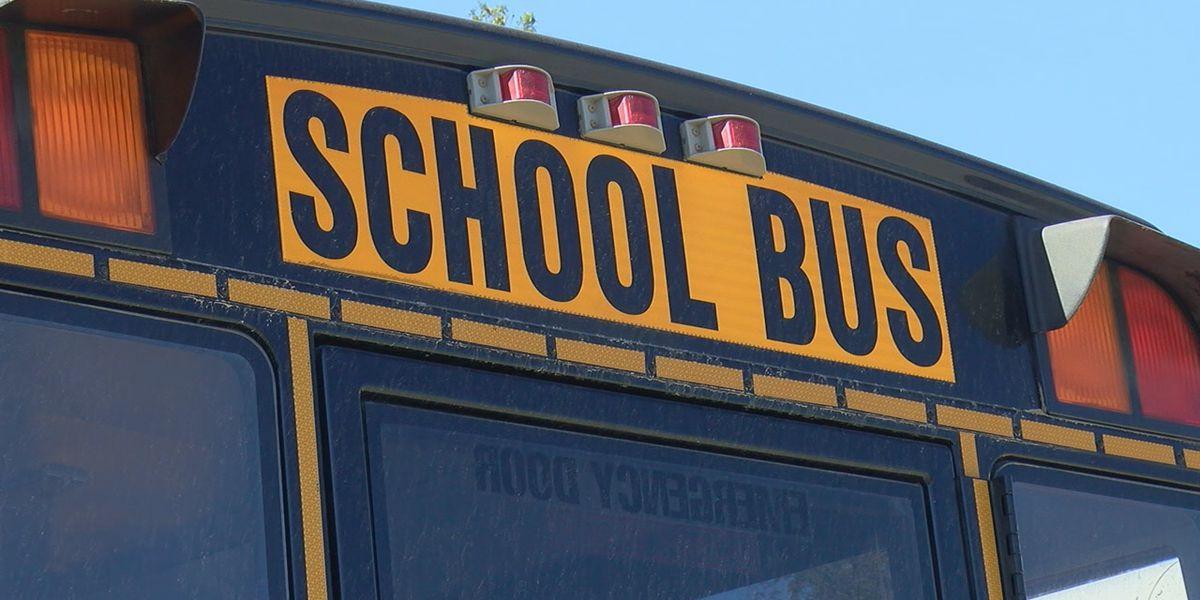 School bus crashes in Williams; driver accused of impairment