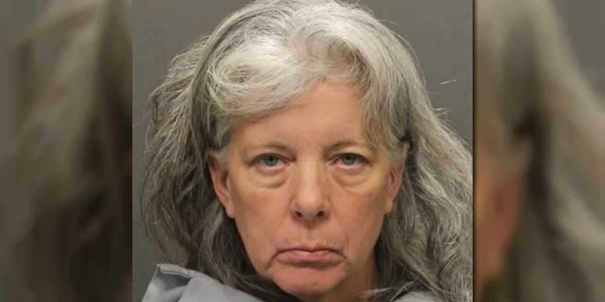 Dorothy Flood accepts plea deal in deaths of grandsons