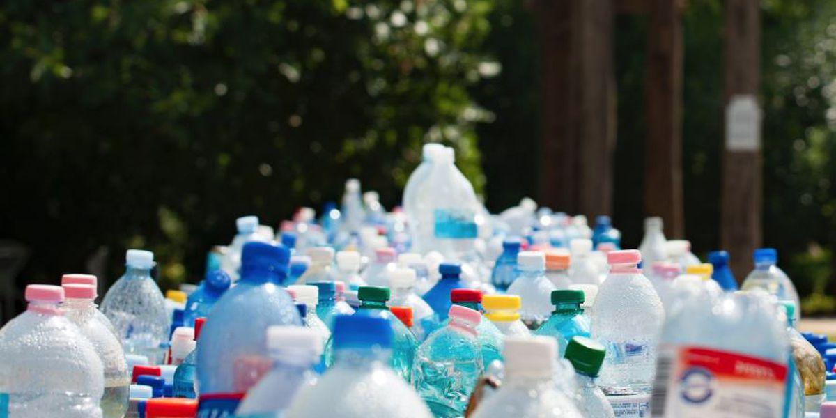 Reid Park Zoo introduces 'Plastic Free Ecochallenge'