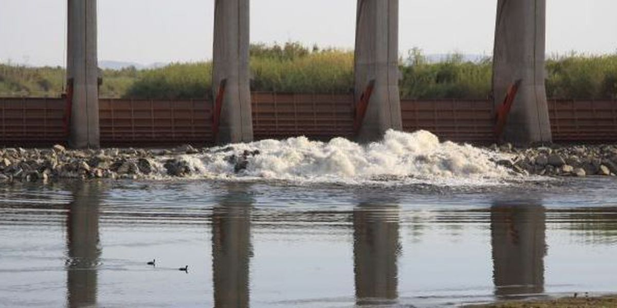 Colorado River flows into Mexico for first time in 60 years