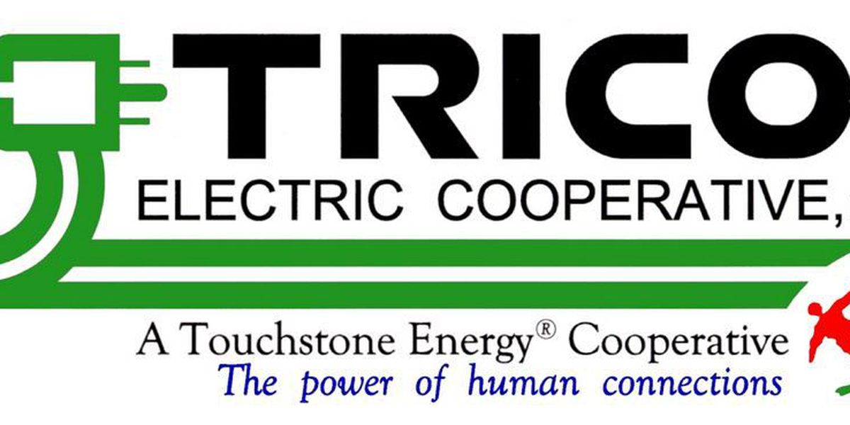 Trico awards 2015 POWER Grants to seven non-profits