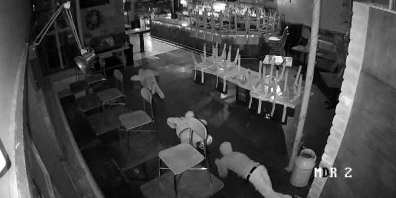 Caught on camera: 'Inchworm bandits' crawl across floor to rob Houston restaurant