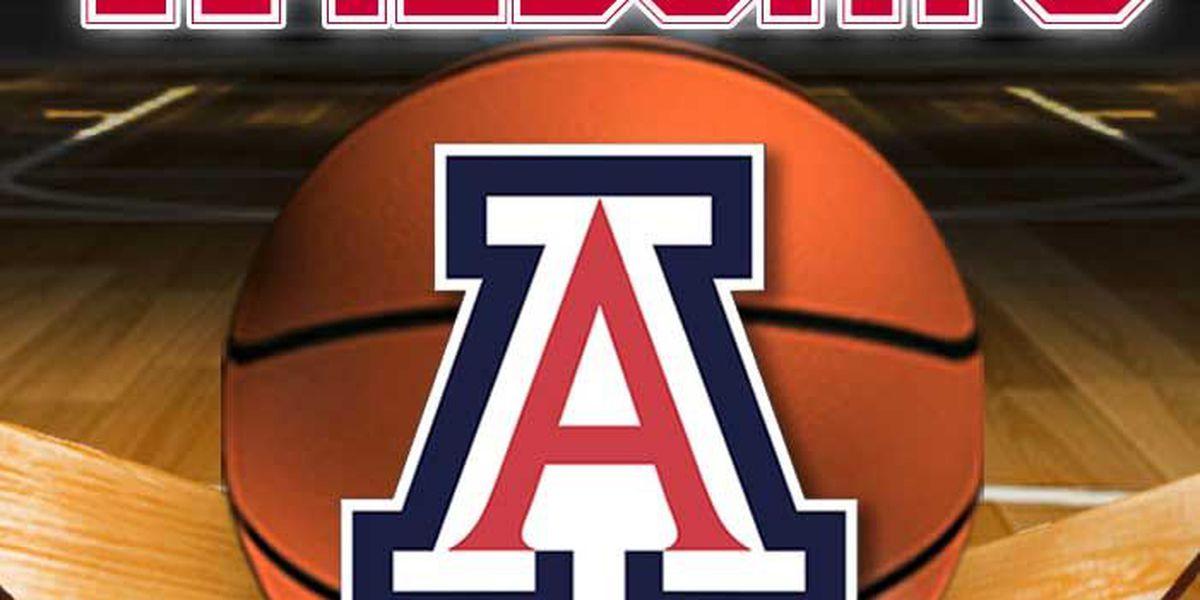 Arizona basketball: Looking at 2015-16