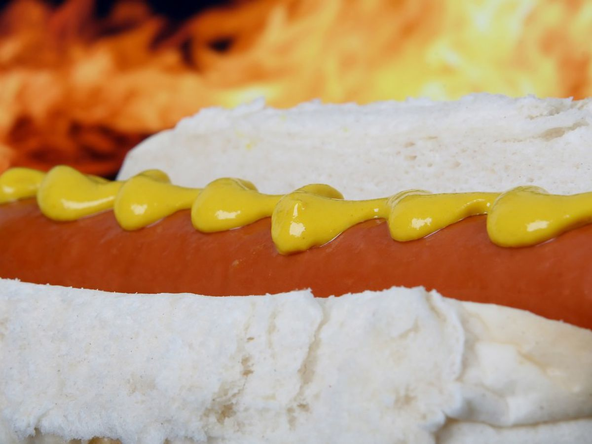 Hot Dog Etiquette: Do's and Don'ts during Fourth of July holiday