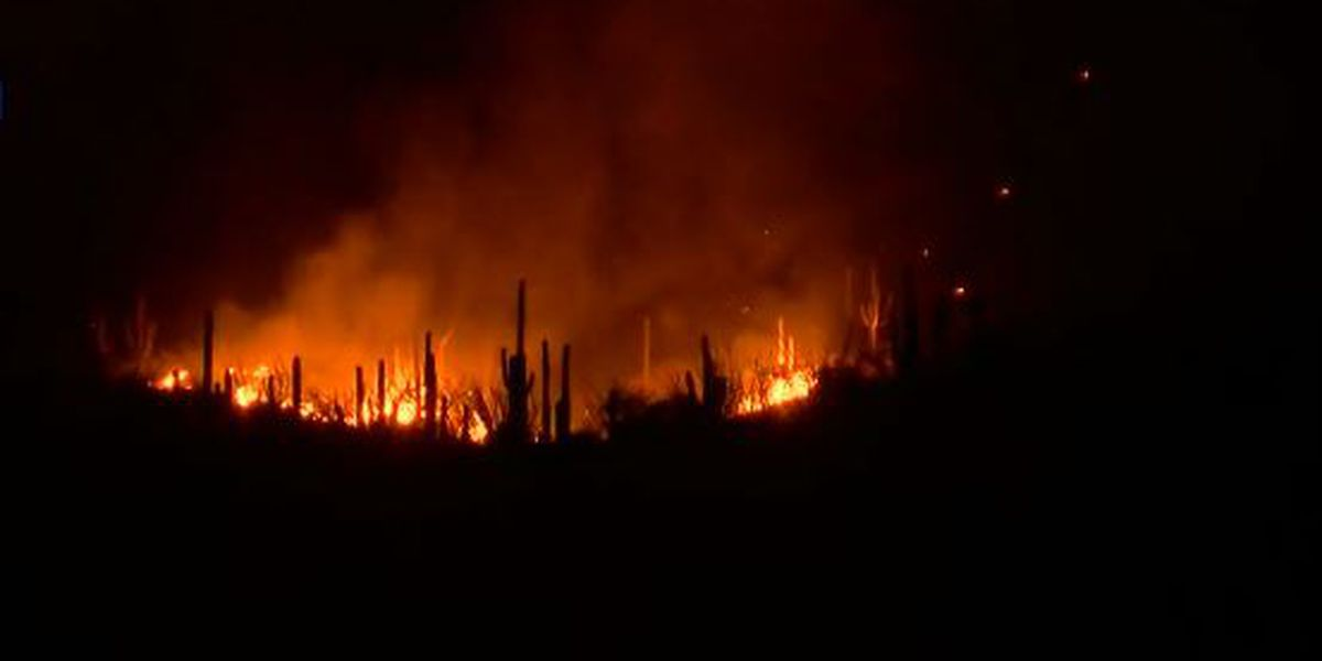 Wildfire visible from Tucson