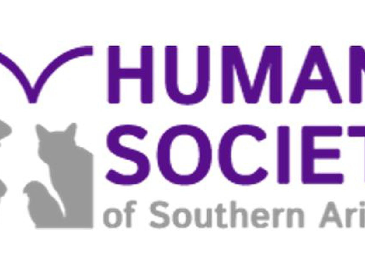 Humane Society of Southern Arizona April Pet of the Day