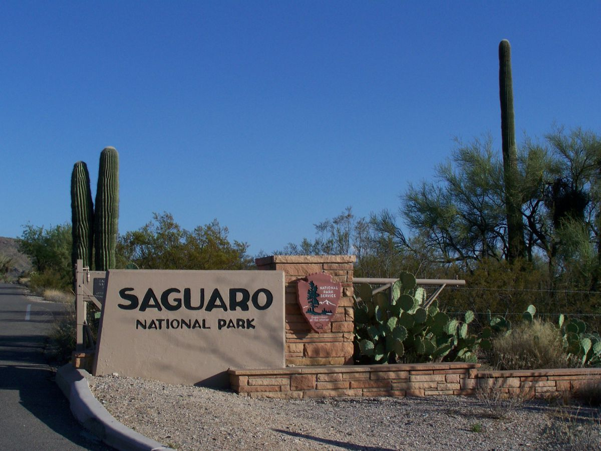 Missing man found dead in Saguaro National Park