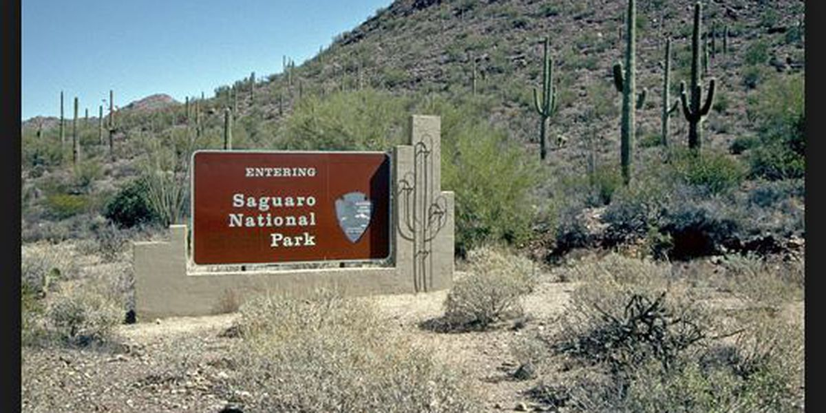 Saguaro National Park, Tucson Mountain District offers Youth Outdoor Camps October through April