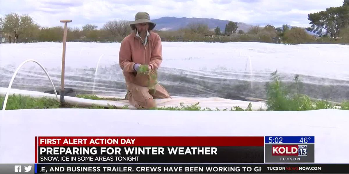 Farmers prep for cold, wet week across southern AZ