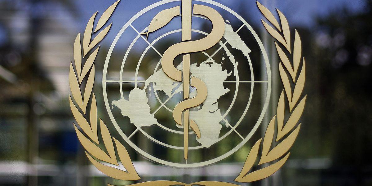 Internal email reveals 65 virus cases among WHO Geneva staff