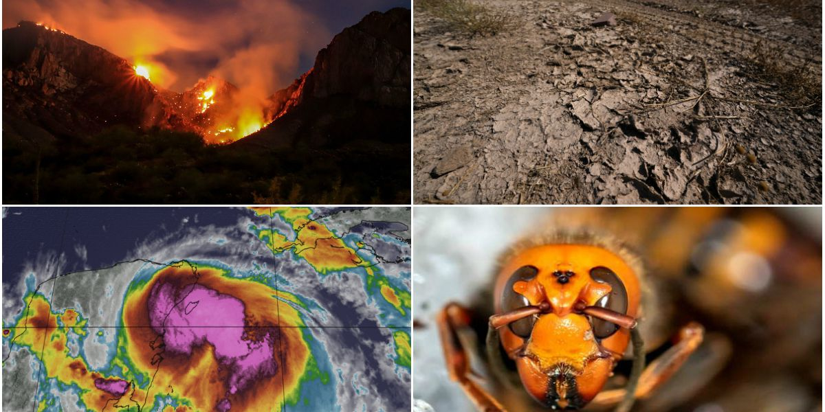 From widespread wildfires to powerful hurricanes; 2020 broke natural disaster records