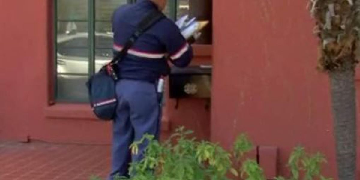 Signed, Sealed, Delivered: A walk in the shoes of a mail carrier during the holidays