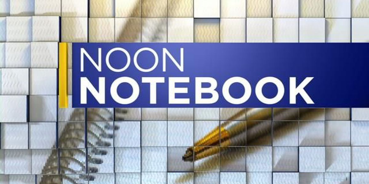NOON NOTEBOOK: Protecting your family with Crime Guard