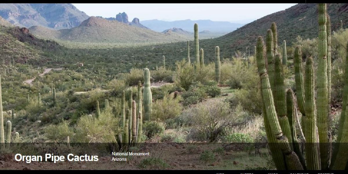 Organ Pipe Cactus NM increases fees to address infrastructure needs, improve visitor experience