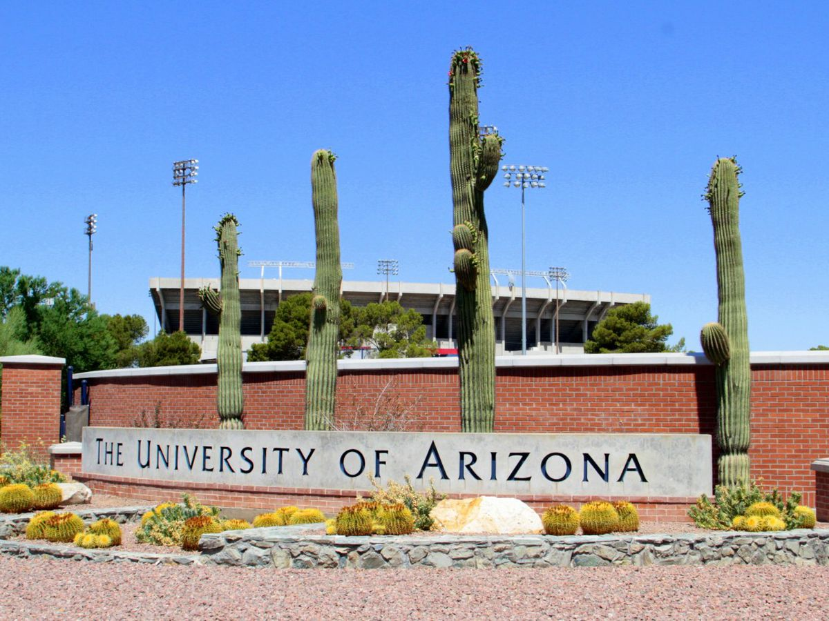 UArizona collaborates to set new international carbon dating standard