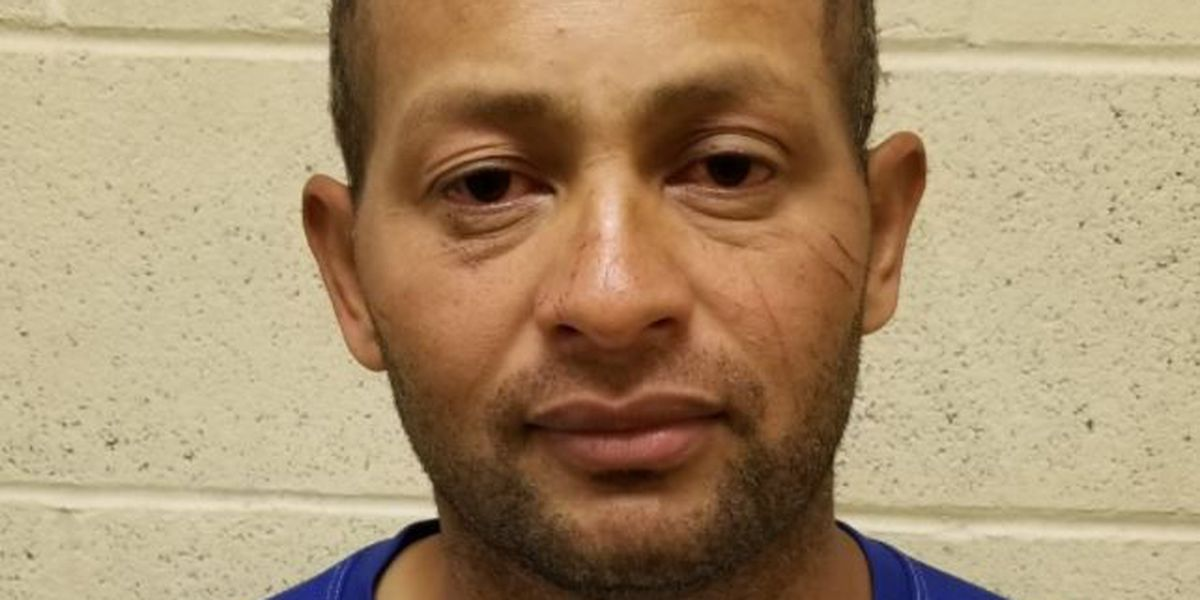 Border agents arrest previously removed convicted rapist