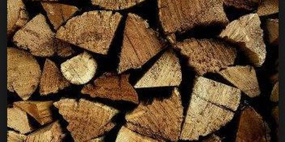 Fuel wood permits available on Sierra Vista Ranger District