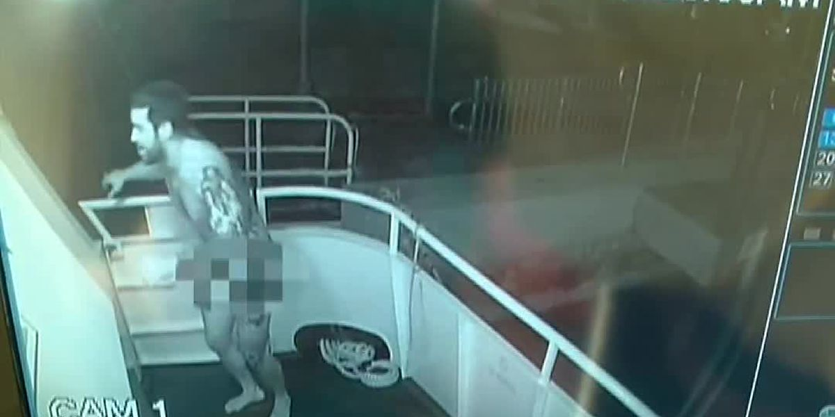 Naked man steals US flag from yacht