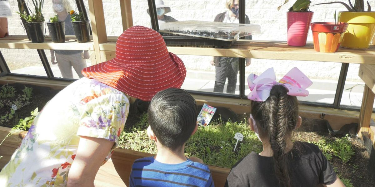 Tucson school transforms greenhouse to give students unique learning experience