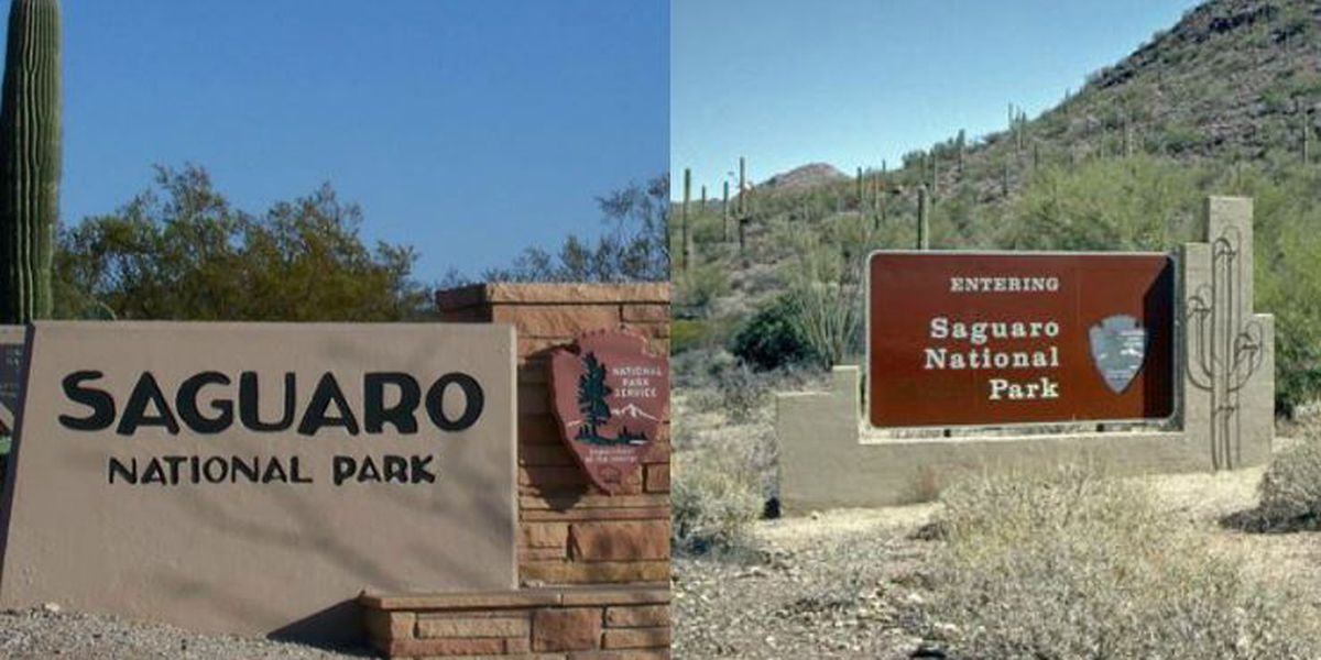 Saguaro National Park April Program Schedule