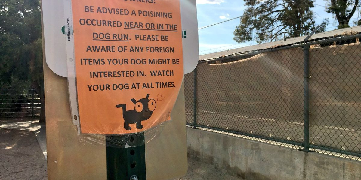Dog owners concerned over potential poisonings at a midtown housing unit