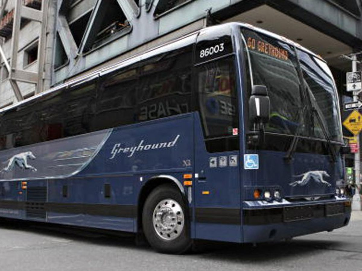 Greyhound to end Border Patrol immigration checks on buses