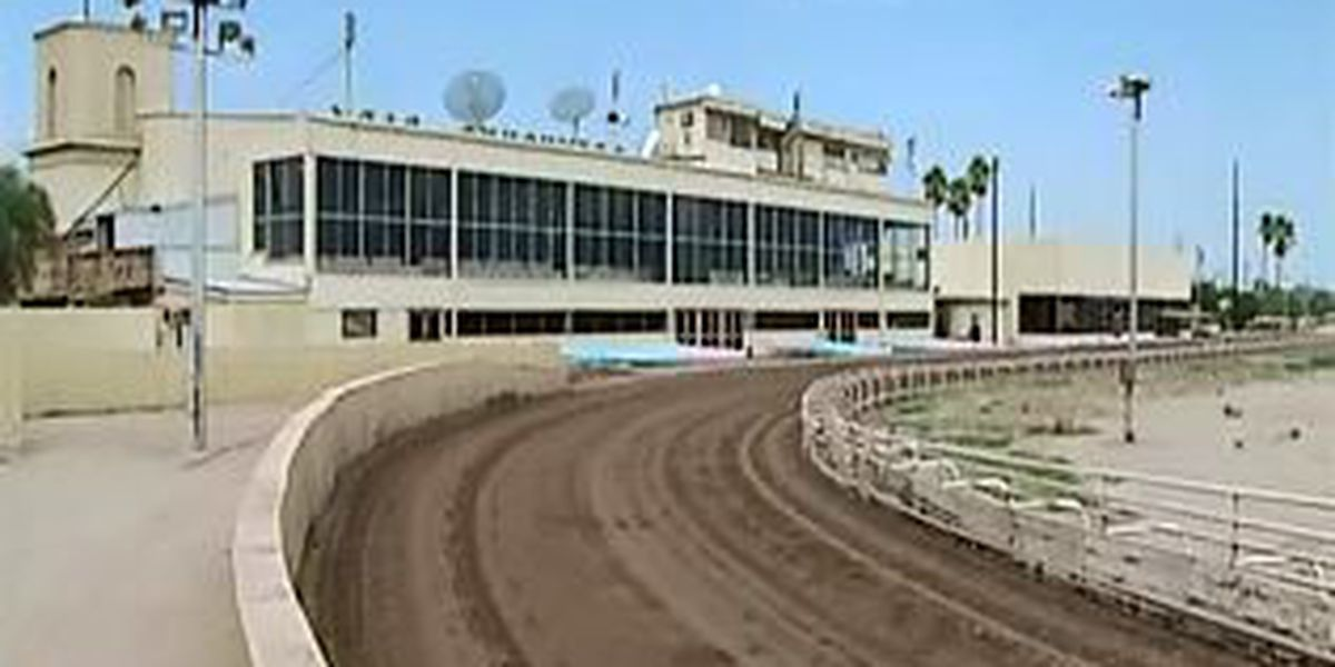 County calls for inspection at Tucson Greyhound Park