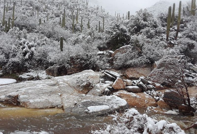 Winter storm dumps snow, rain on Tucson, causes travel