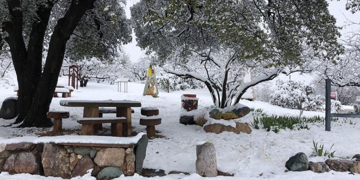 Oracle gets record 10 inches of snow Friday morning