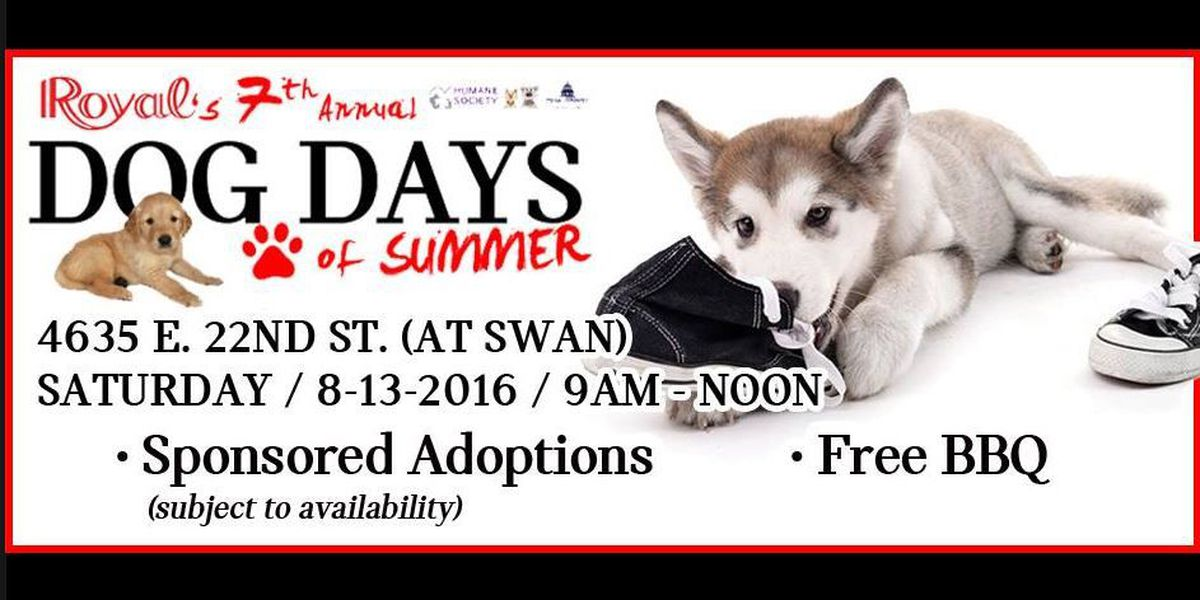 "Royal Automotive's ""Dog Days of Summer"" adoption event"