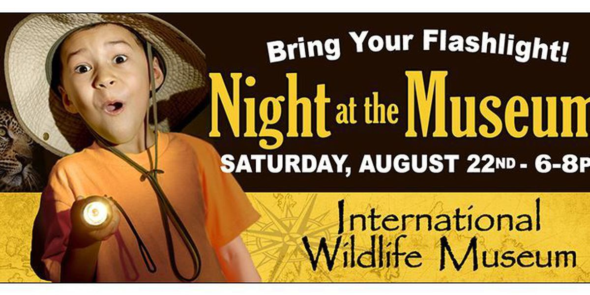 Bring your flashlights to the International Wildlife Museum