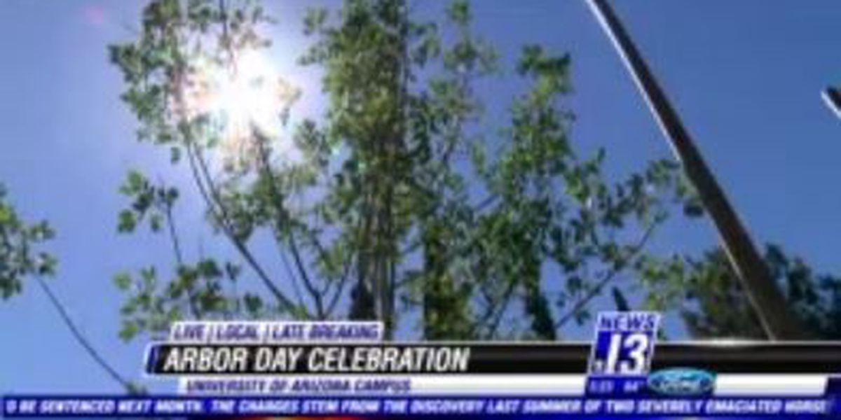 Celebrating trees in Tucson on Earth Day